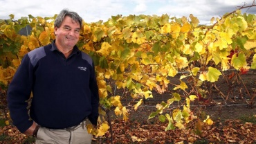 Clover Hill named Tasmanian vineyard of the year