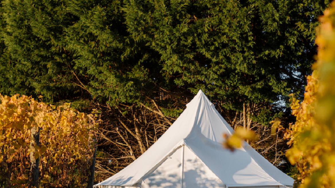 Vineyard Glamping
