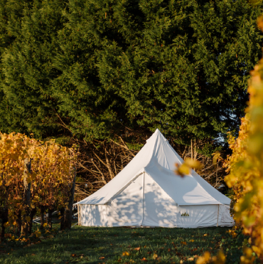 Vineyard Glamping – Effervescence Festival